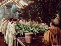 Herbology88