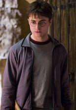 P6 Harry Potter campera