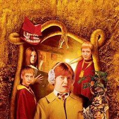Ron, Ginny, George, Fred, mandrágora