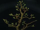 Árbol vitalizante