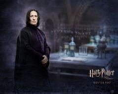 P5 Severus Snape poster