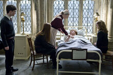 P6 ron ginny hermione harry pomfrey hospital