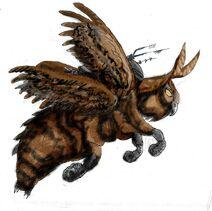 HawkMoth2