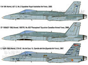 Profile of aircraft represented