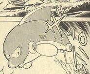 Dolphin-Ikehara