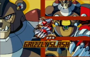 Grizzly slash present