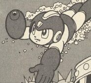 Agua-Ikehara3