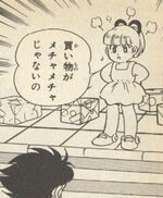 Roll-Ikehara-R4