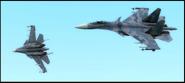 Su-37 patrol