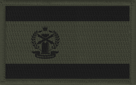 Jenkins Flag Patch