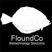FloundCoLogo steam