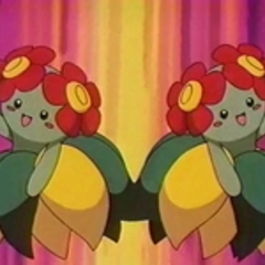 EP124 Bellossom (2).png