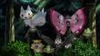 EP922 Pokémon del bosque