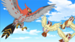 EP892 Talonflame y Pidgey