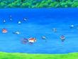 EP558 Pokémon del lago (2)