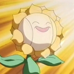 EP137 Sunflora (5).png