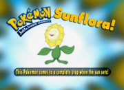 EP187 Pokémon