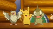 EP662 Pikachu Axew y Pidove
