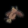 Noctowl espalda G6