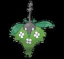 Wormadam planta