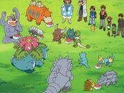 EP412 Pokemon de Noland