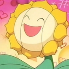 EP137 Sunflora (4).png
