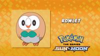 EP947 Cuál es este Pokémon