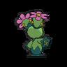 Maractus espalda G6