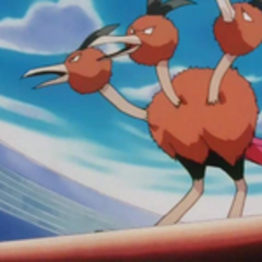 EP133 Dodrio (4).png
