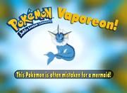 EP207 Pokémon