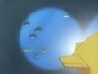 EP370 Pokémon acuáticos