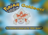 EP253 Pokémon