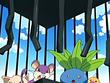 EP420 Pokémon robados (2)