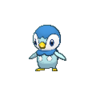 Piplup XY