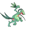 Grovyle Conquest