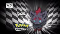 EP700 Quién es ese Pokémon