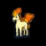 Ponyta XY