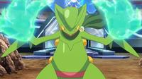 EP931 Garra dragon