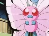 EP021 Butterfree Rosa