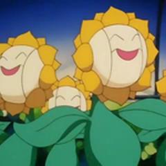 EP137 Sunfloras de sonrisa.png