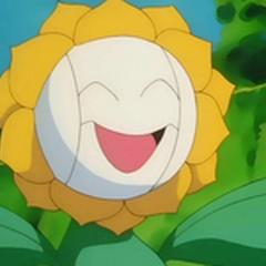 EP137 Sunflora con cremas faciales.png