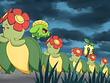 EP401 Pokémon salvajes
