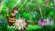 EP911 Pokémon del bosque (1)