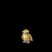 Pidgey GO
