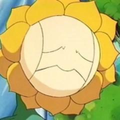EP137 Sunflora triste.png