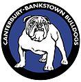 Canterbury-bankstown bulldogs 1980s logo