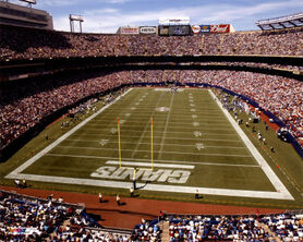 30330 ori giants stadium