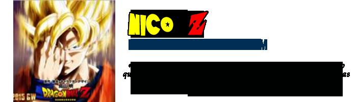 Placa Nico