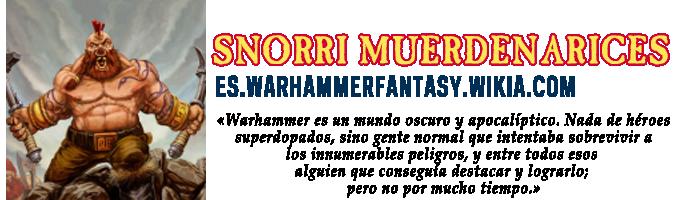 Placa Snorri