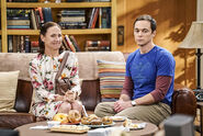 ES TV Guide Q1 2017 - Big Bang Theory 3